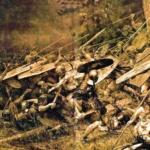 Bárbaros, Licantropía y Disidencia